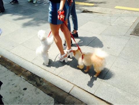 NaverBlog_20140513_221606_18