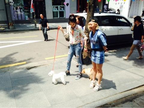 NaverBlog_20140513_221607_19