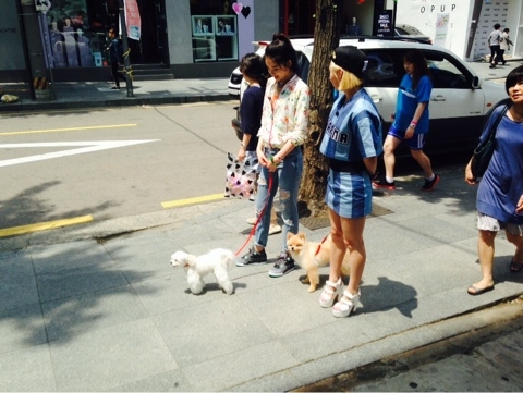 NaverBlog_20140513_221608_20